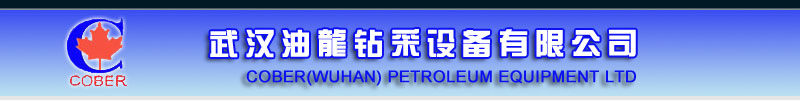 Cober (Wuhan) Petroleum Equipment Ltd.